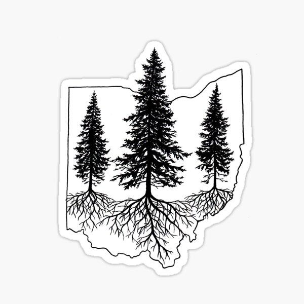 Pine Trees in Ohio Sticker