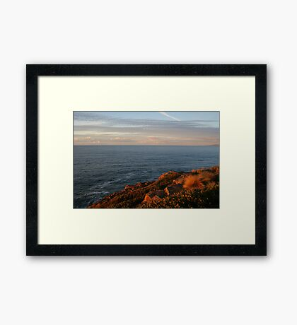 Kissed by the sun... Framed Print