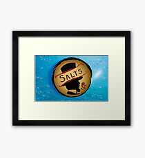 Salts Framed Print