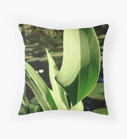 Duck Potato Foliage - light and shadow Throw Pillow