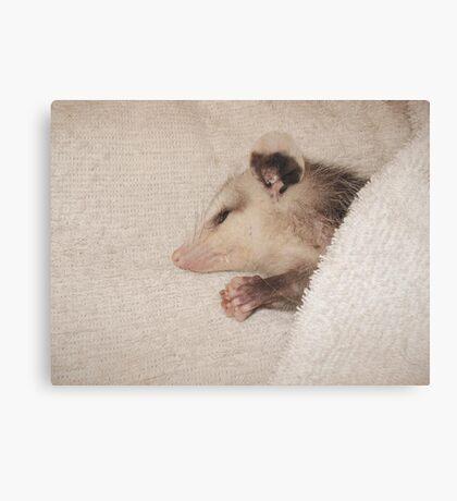 Now I lay me down to sleep - Canvas Print