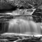 Seneca Falls (detail #1) by Aaron Campbell