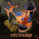DECEMBER SHOES by norakaren