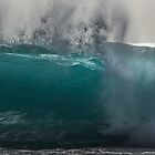 Looking through Waves by Barbara Burkhardt
