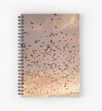 Sunset Movements Spiral Notebook