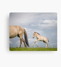 The Little One Canvas Print