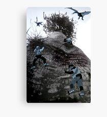 Tree Climbers Canvas Print