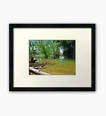 Let's Check It Out!!! Framed Print