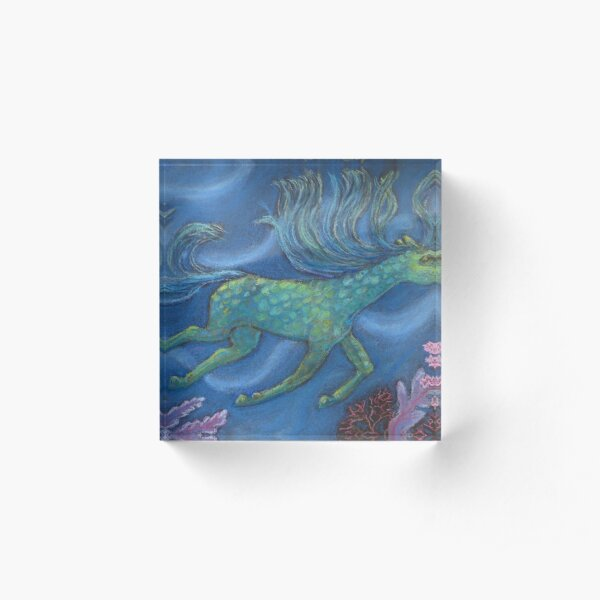 Happy horse swimming in coral sea Acrylic Block