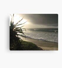 Wategoes Beach - New South Wales Canvas Print