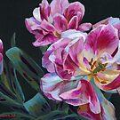 «Tulipanes rosa» de Emma   Reznikova