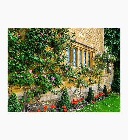 Climbing Roses, Flowers & Architecture. Photographic Print