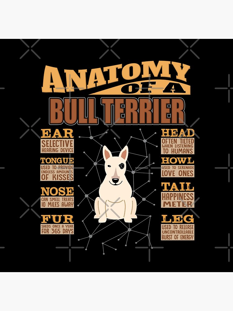 Anatomy Of A Bull Terrier - Funny Bull Terrier Design by dog-gifts