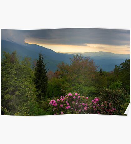 Mountain Evening Poster