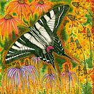 Zebra Swallowtail Butterfly by Catherine  Howell