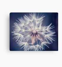 Dandelion Blue Canvas Print