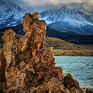 Mono and Sierras by Barbara  Brown