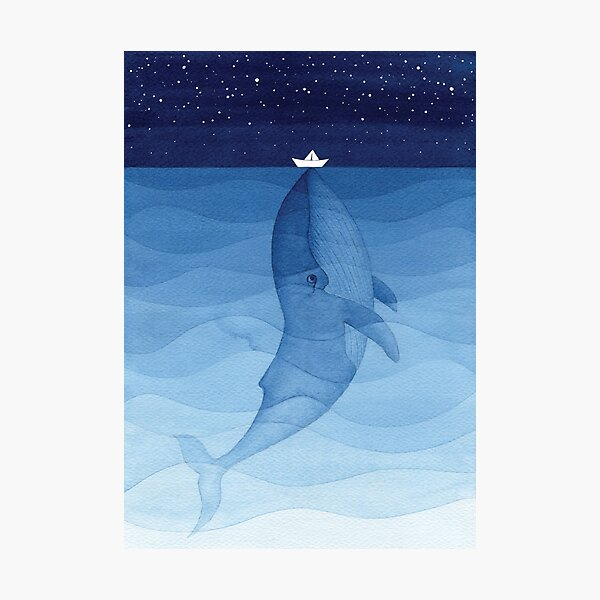 Blue whale, sea animal Photographic Print