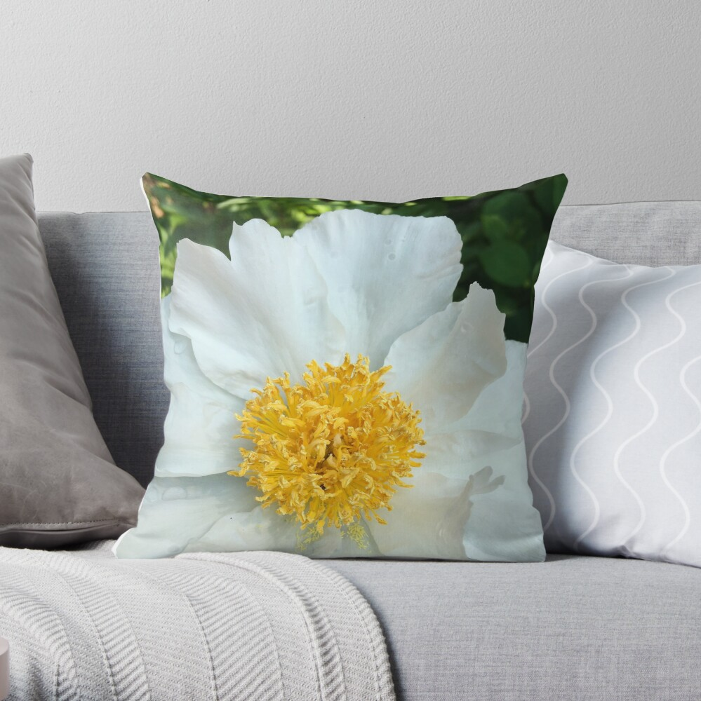 Floral Gift - Chinese Peony Photography  Throw Pillow