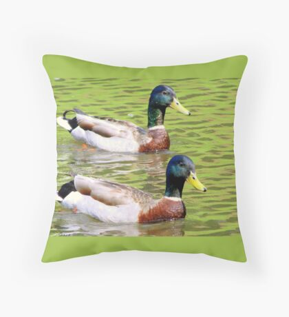 Synchronized Swimming Duck Duet  Throw Pillow