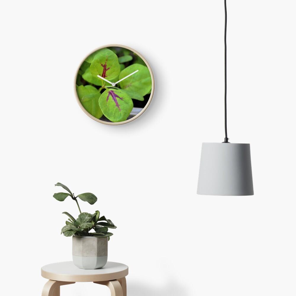 Calalloo Clock