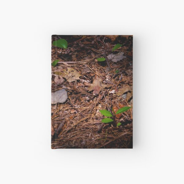 The Woodland Floor at Walden Hardcover Journal