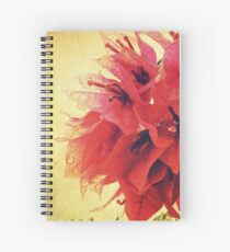 Sunset Bougainvillea Spiral Notebook