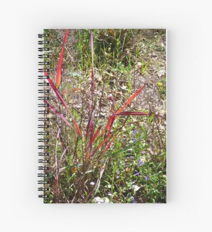 Spring in Karnup Bush Spiral Notebook
