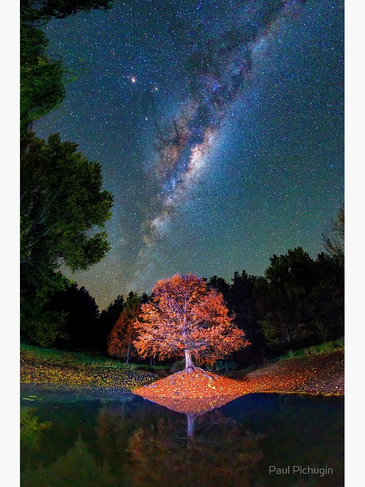 Night Skies over Balingup by paulmp