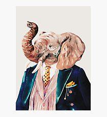 Elefant (Sahne) Fotodruck