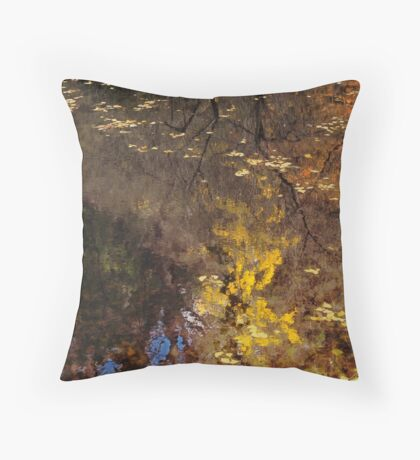Late Autumn Reflections on Pond Throw Pillow