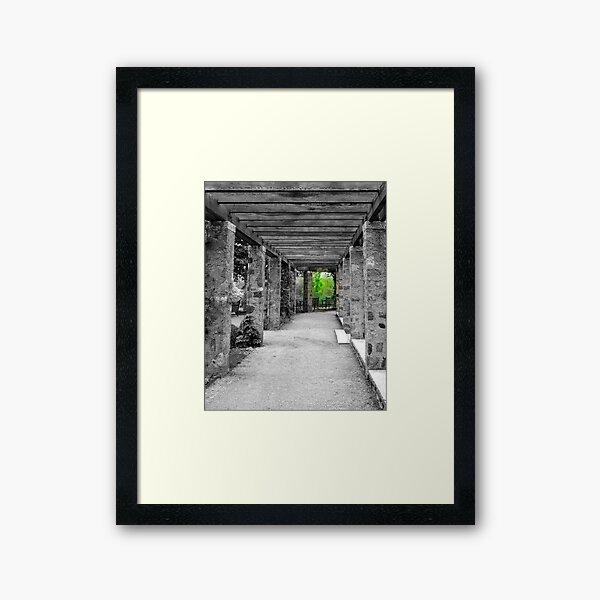 Narnia © Framed Art Print