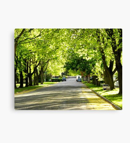 It's Finally Spring Canvas Print