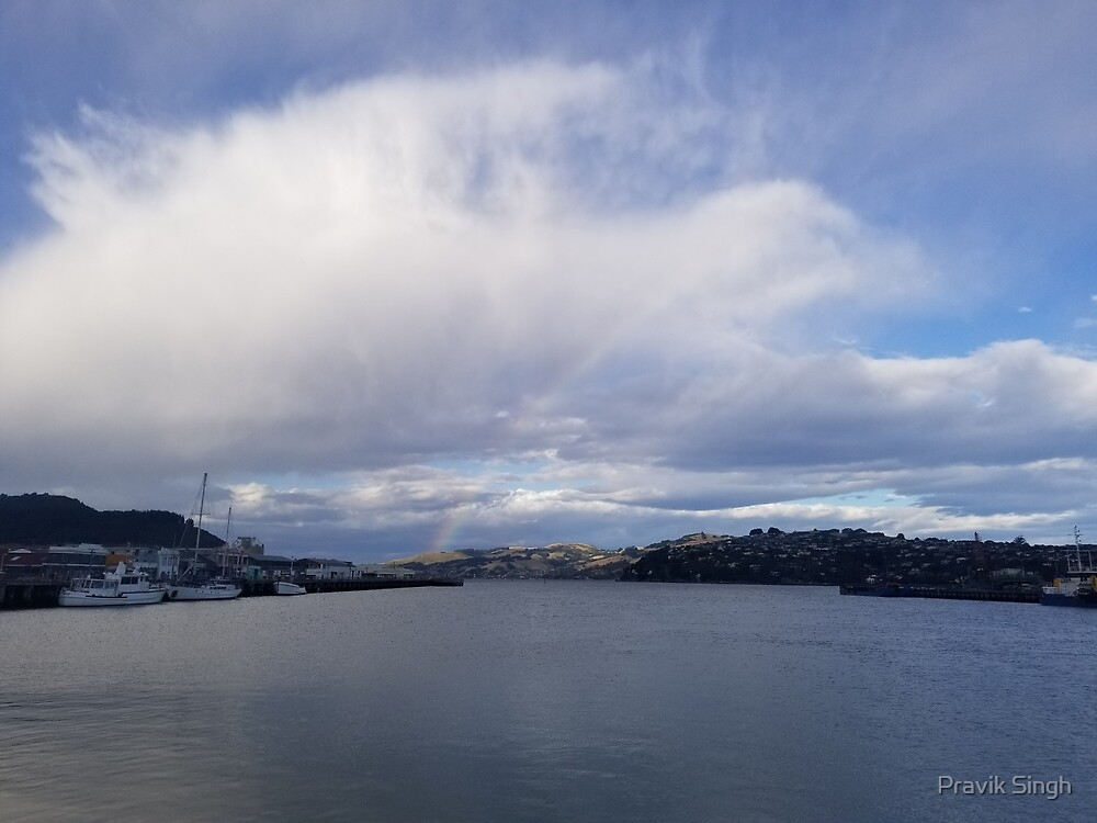Sudden Rainbow Over the Cloudy Docks by Pravik Singh