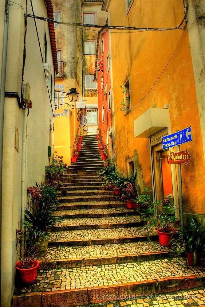 Sintra alley by terezadelpilar ~ art & architecture