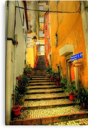 Sintra alley by terezadelpilar ~ art & architecture