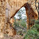The Arch Tambaroora NSW Australia by Bev Woodman