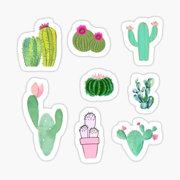 Cactus variety sticker pack Sticker