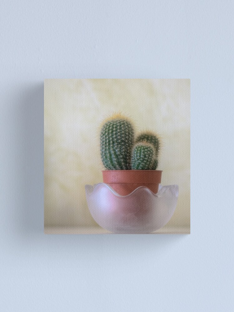 Alternate view of A small cactus in my room Canvas Print