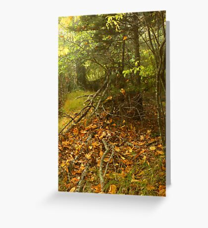 Home of the Forest Spirits Greeting Card