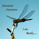 Attention..... by Lynette Higgs