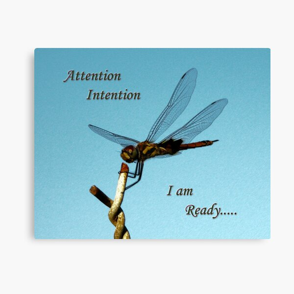 Attention..... Canvas Print