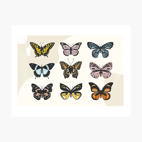 Butterfly Sticker Pack Photographic Print