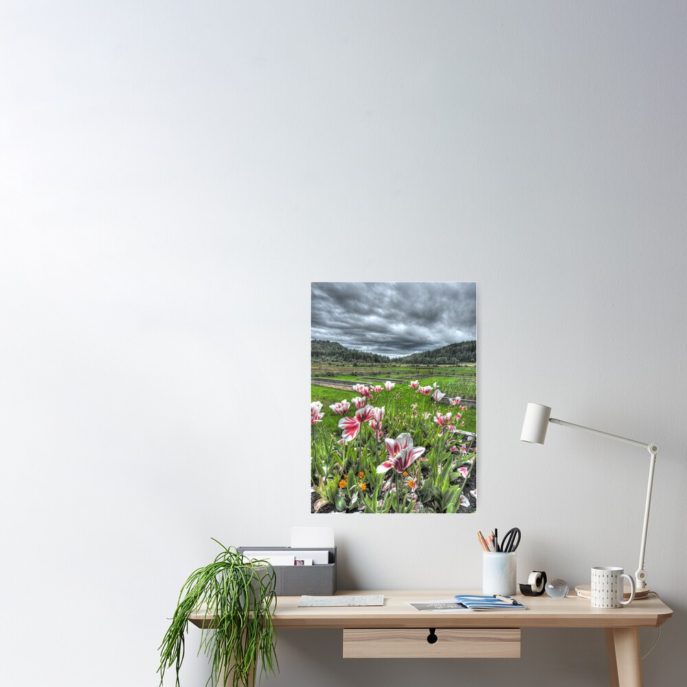 Spring on Punch's Farm Poster
