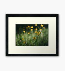 yellow dot Framed Print