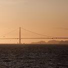The Golden Gate by Stuart Jenkins