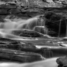 Seneca Falls, detail #2 by Aaron Campbell