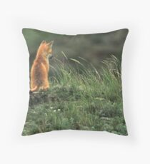 Alone but not Lonely, Fox photo by Donna Ridgway Throw Pillow
