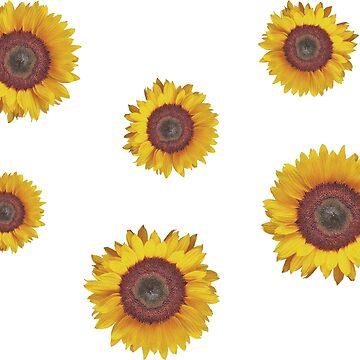 Sunflower Sticker Pack by aterkaderk