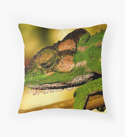 Just warming up!! Throw Pillow